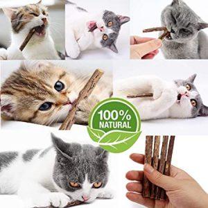 Niteangel Natural Matatabi Catnip Sticks Cat Chew Toy, 20-count