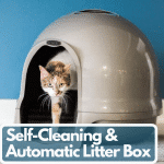 Best Cat Litter Boxes 2020: Self-Cleaning & Automatic Litter Box