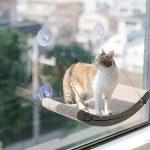 Best Cat Window & Wall Perches: Climbing Shelves (2020 Reviews)