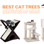 Best Cat Trees (Review) of 2020: Pros and cons