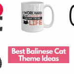 Best Balinese Cat Theme Ideas