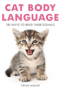 Cat Body Language: 100 Ways to Read Their Signals