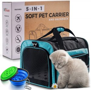 Cat Backpack - 5-in-1 Premium CAT