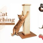 Best Cat Scratching Posts of 2021